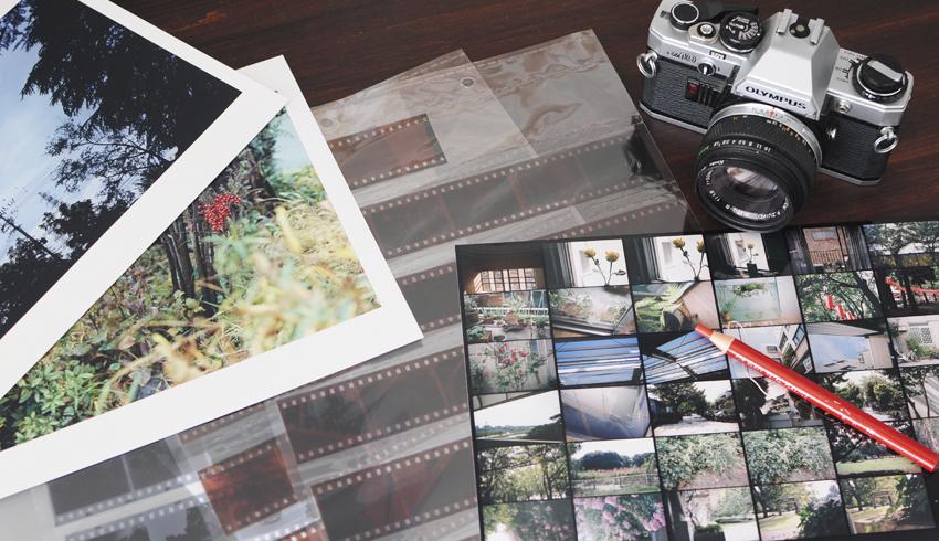 【女性限定/初心者向け】フィルム写真の楽しみ方教室