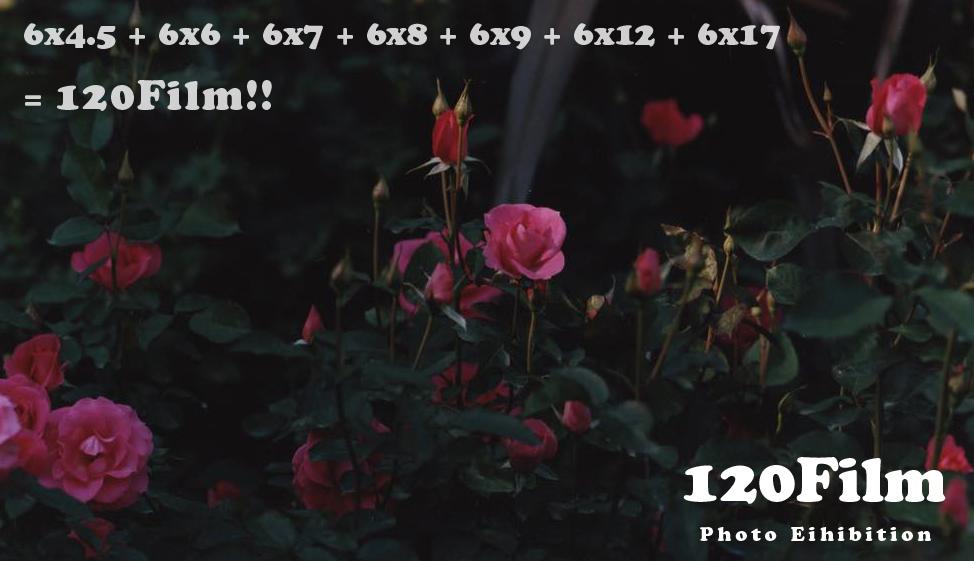 「120Film 展」出展者募集