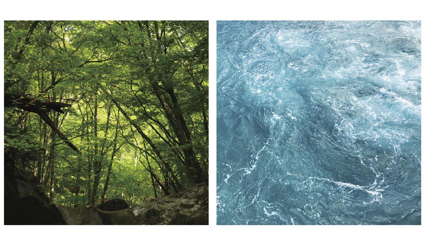 ネイチャー写真展「山の思い出/海の記憶/空の記録」「私の中にある自然」参加者募集中