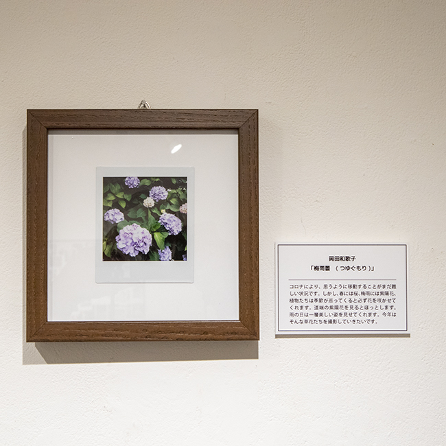 チェキ展_岡田和歌子