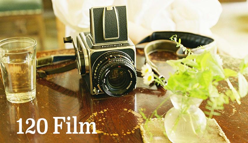 120Film 展「わたしが中判カメラを使う理由」出展者募集中
